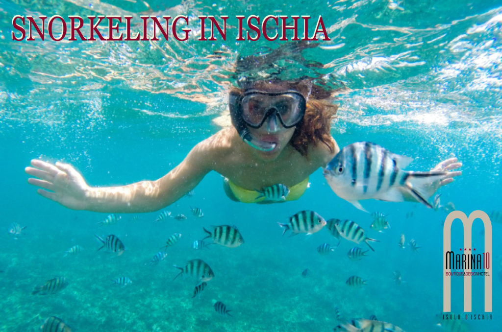 Snorkeling in Ischia validity from 19 April to 07 August 2019 and from 25 August to 21 October 2019.